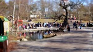 Griillplausch im Park